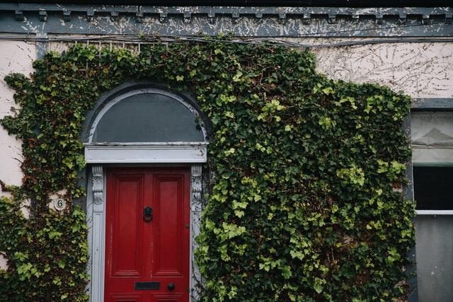 red door in Dublin Ireland