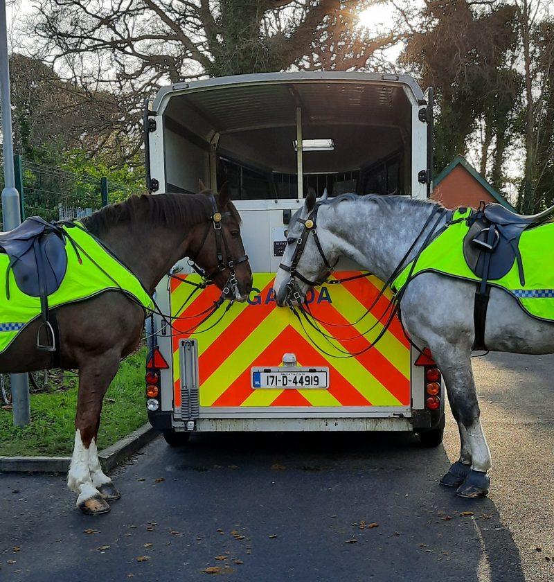 Garda horses Ireland